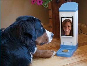 iCPooch interactive pet app