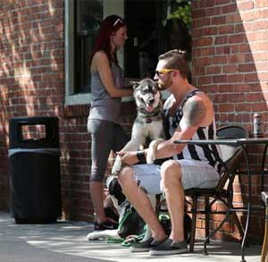 tips for taking your dog out in public in NYC