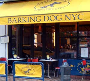 Dining out with your dog in NYC